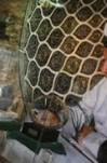 پیام آیت الله هاشمی رفسنجانی درباره موزه و میراث فرهنگی